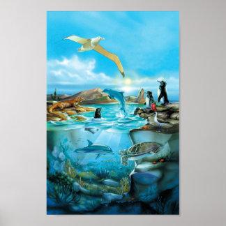 Poster dos animais de Galápagos