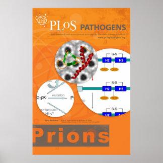 Poster dos prião dos micróbios patogénicos de PLoS