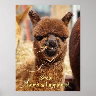 Poster engraçado da alpaca