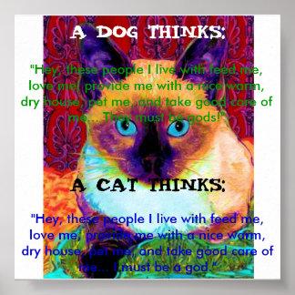 Poster engraçado do gato