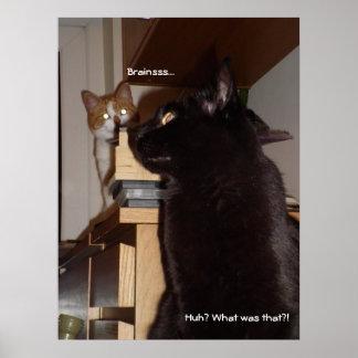 Poster engraçado do gato dos cérebros do zombi pôster