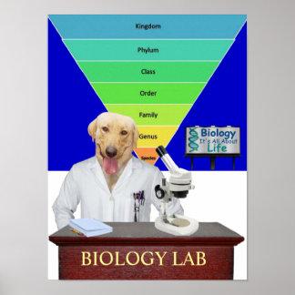 Poster engraçado do laboratório de biologia para