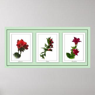 Poster floral 2 do trio botânico