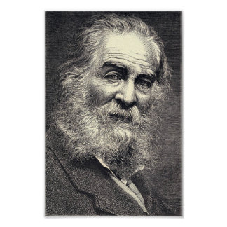 Poster Folhas de Walt Whitman da gravura da grama, idade