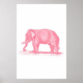 Poster Ilustração dos elefantes dos 1800s do elefante