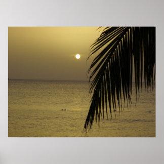 Poster jamaicano do por do sol