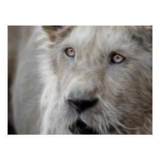 Póster Leão do Fractal com cara do gato