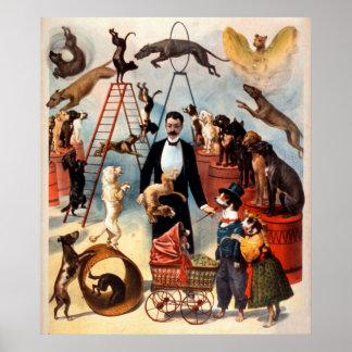 Poster O circo 1899 treinado do ato do cão persegue o