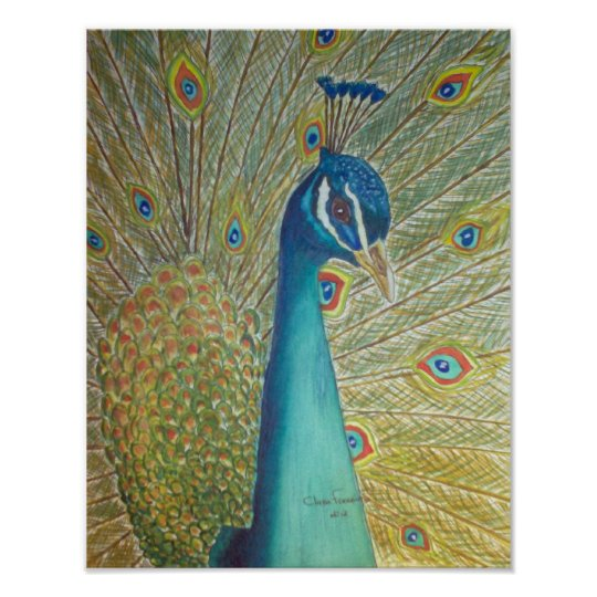 Póster Peacock