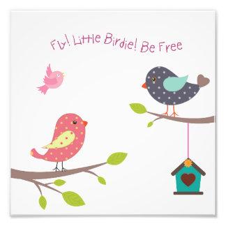 Poster pequeno do pássaro para os bebés e as impressão de foto
