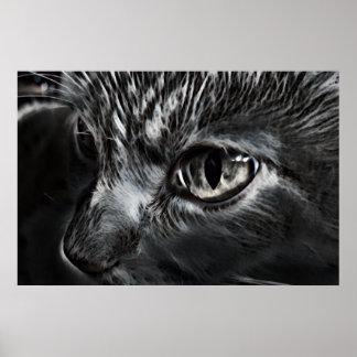 Poster preto e branco do gato pôster