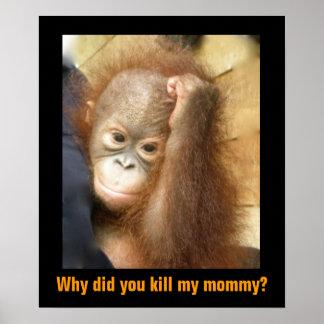 Poster Salvar o orangotango psto em perigo do órfão dos