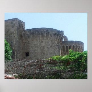 Poster velho histórico do castelo da piscina da ci pôster