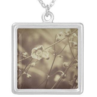 Pouca flor (Sepia) Colar Banhado A Prata