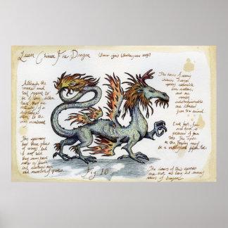 Pouco dragão chinês do fogo poster