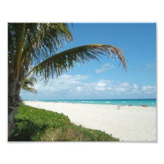 Praia branca w/Palm da areia Foto Arte