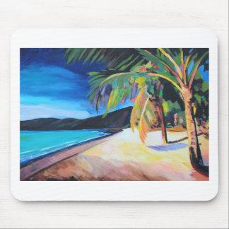 Praia na baía St Thomas E.U. Virgin Islands de Mouse Pad
