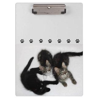 Prancheta bonito de três gatinhos