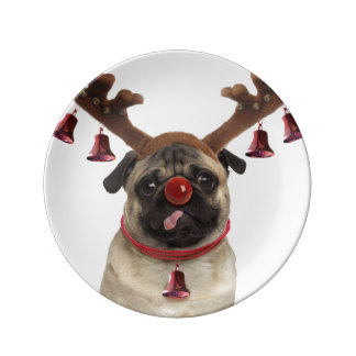 Prato Antlers do Pug - pug do Natal - Feliz Natal