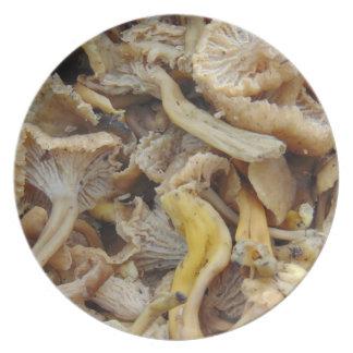 Prato Cogumelos de Chantarelle