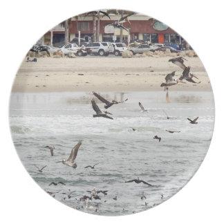 Prato De Festa Animais do oceano dos animais selvagens da praia