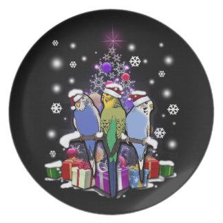 Prato De Festa Budgerigars com presente e flocos de neve do Natal