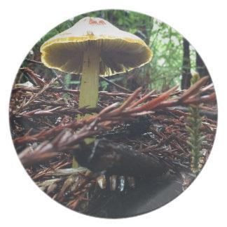 Prato De Festa Cogumelo amarelo do chapéu