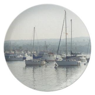 Prato De Festa Mar da navigação do barco dos animais selvagens