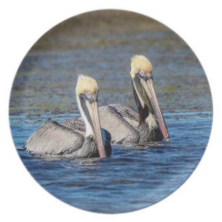 Prato De Festa Pares de pelicanos