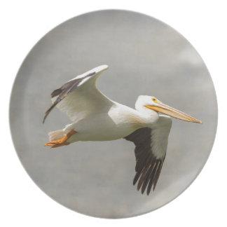 Prato De Festa Pelicano em vôo