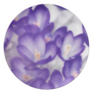 Prato De Festa Remendo da flor do açafrão da lavanda