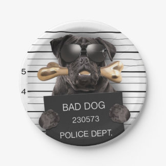 Prato De Papel Cão do Mugshot, pug engraçado, pug