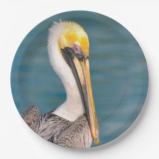 Prato De Papel Fim do retrato do pelicano acima com o oceano no
