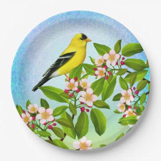 Prato De Papel Goldfinch americano nas placas de papel das flores