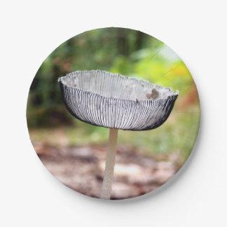 Prato De Papel Placas de papel plissadas do cogumelo de Inkcap