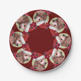 Prato De Papel Placas de papel vermelhas de caniche de brinquedo