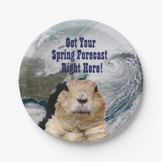 Prato De Papel Previsão do primavera de Groundhog