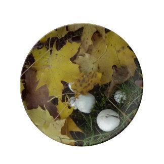 Prato De Porcelana cogumelo da placa