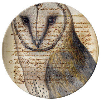 Prato De Porcelana Colagem da coruja de celeiro