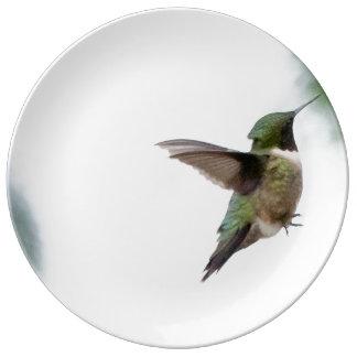 Prato De Porcelana Colibri Rubi-throated do pássaro animal