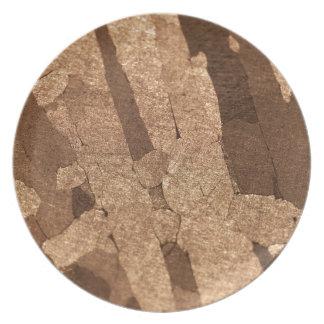 Prato Foto macro de um meteorito do ferro