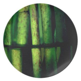 Prato Macro verde