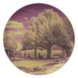Prato Paisagem infravermelha do cemitério