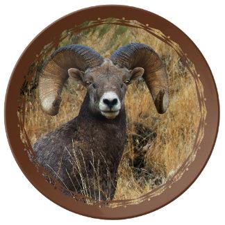 Prato Ram do Bighorn