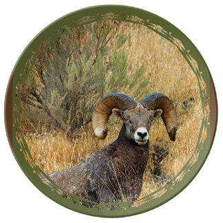 Prato Retrato do Bighorn