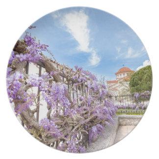 Prato Sinensis azul de florescência das glicínias na