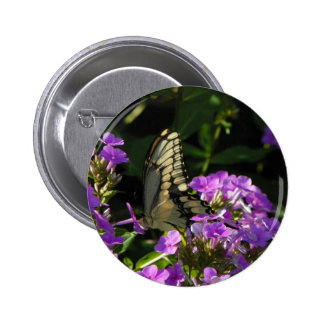 Presente da foto da borboleta bóton redondo 5.08cm