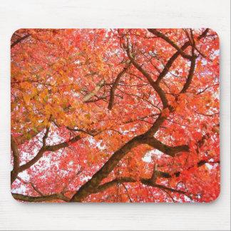 Presentes bonitos da paisagem do outono de mouse pad