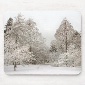Presentes da floresta da neve de Mousepad do país