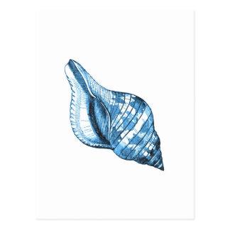 Presentes litorais náuticos do oceano do escudo cartão postal